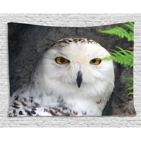 - Wizard Tapestry, Pattern White Owl Themed Animal Green Leaves Amber Eyes Gift Witchcraft Print, Wall Hanging for Bedroom Living Room Dorm Decor, 60W X 40L Inches, White Green Black, by Ambesonne