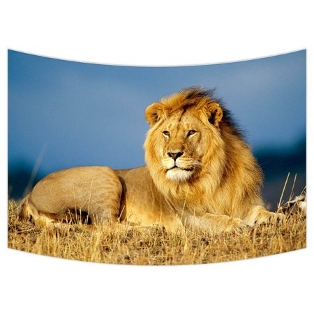 Gckg African Lion Bedroom Living Room Art Wall Hanging Tapestry Size 90x60 Inches