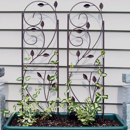 (Sunnydaze 32 Inch Rustic Plant Design Garden Trellis, Metal Wire for Outdoor Climbing Flowers and Vines, Black, Set of 2)