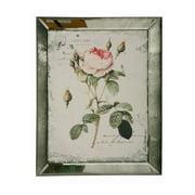 Winward Designs English Rose Framed Painting Print