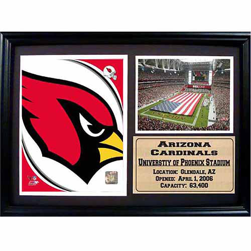 NFL 12x18 Photo Stat Frame, Arizona Cardinals