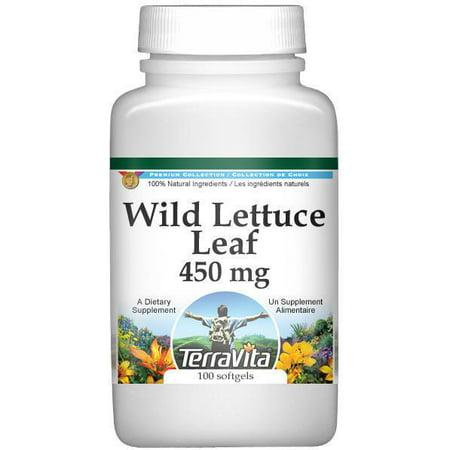 Sauvage laitue - 450 mg (100
