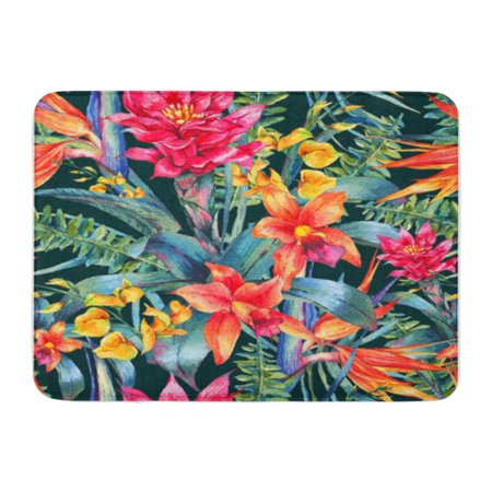 KDAGR Watercolor Vintage Floral Tropical Exotic Flowers Bird of Paradise Twigs Doormat Floor Rug Bath Mat 23.6x15.7 inch