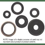 Winderosa 822236 oil seal set