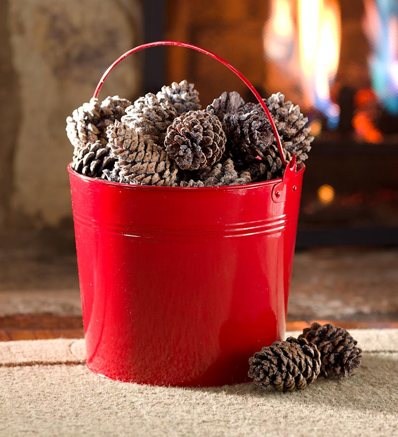Color Cones for Fireplaces in 2-1/2 Lb. Red Bucket