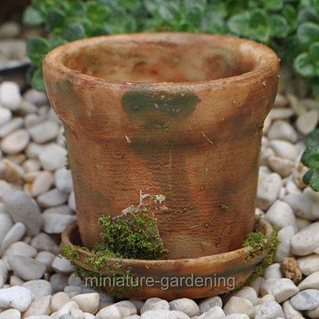 Saucer Miniature (Miniature Mossy Aged Flower Pot with Saucer for Miniature Garden, Fairy Garden )