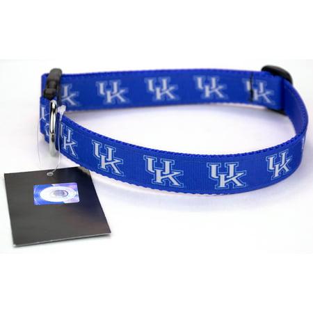 Blue Kentucky Wildcats Ribbon Dog Collar - Halloween Ribbon Dog Collars