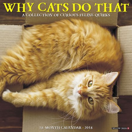 Willow Creek Press 2018 Why Cats Do That Wall Calendar