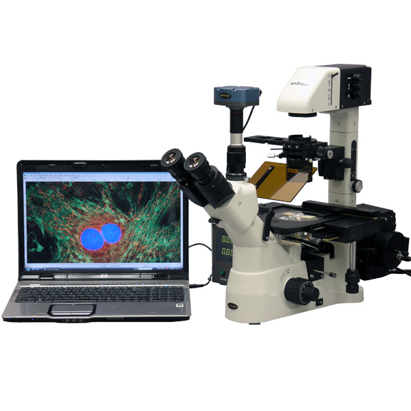 AmScope 40X-900X Phase Fluorescence Inverted Microscope w...