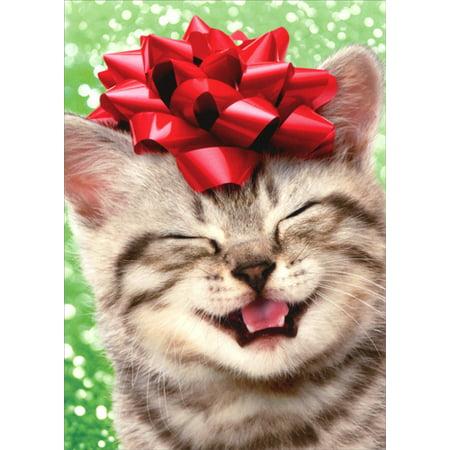 Kitten Christmas.Avanti Press Happy Kitten With Red Bow Cat Christmas Card