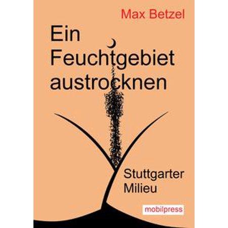 book Ту 160 2003