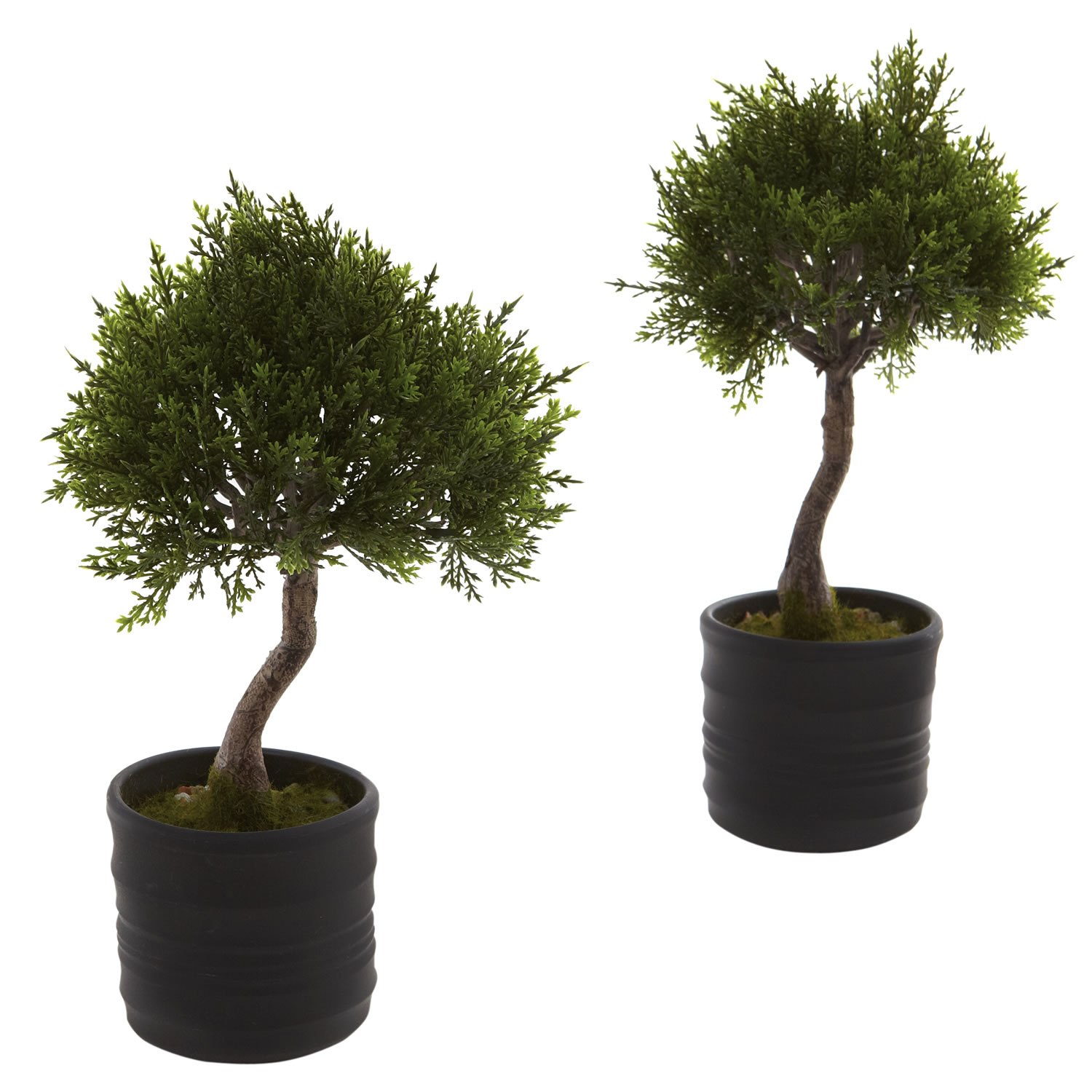 Nearly Natural Cedar Bonsai with Planter, 2pk by Nearly Natural