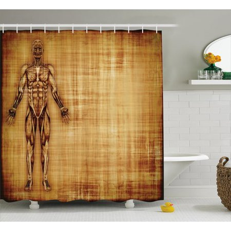 (Ambesonne Human Anatomy Grunge Old Parchment Effect Skeleton Muscles of Human Body Retro Art Print Shower Curtain)