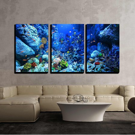 "wall26 - 3 Piece Canvas Wall Art - Underwater World - Modern Home Decor Stretched and Framed Ready to Hang - 24""x36""x3 Panels"