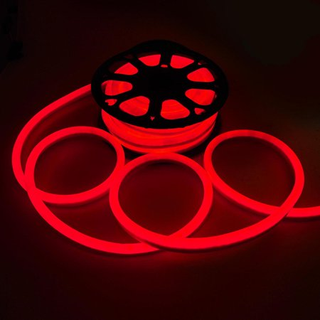 Neo Neon Rope Light (DELight Flexible LED Neon Rope Light Indoor Outdoor Holiday Valentines Party Decor)
