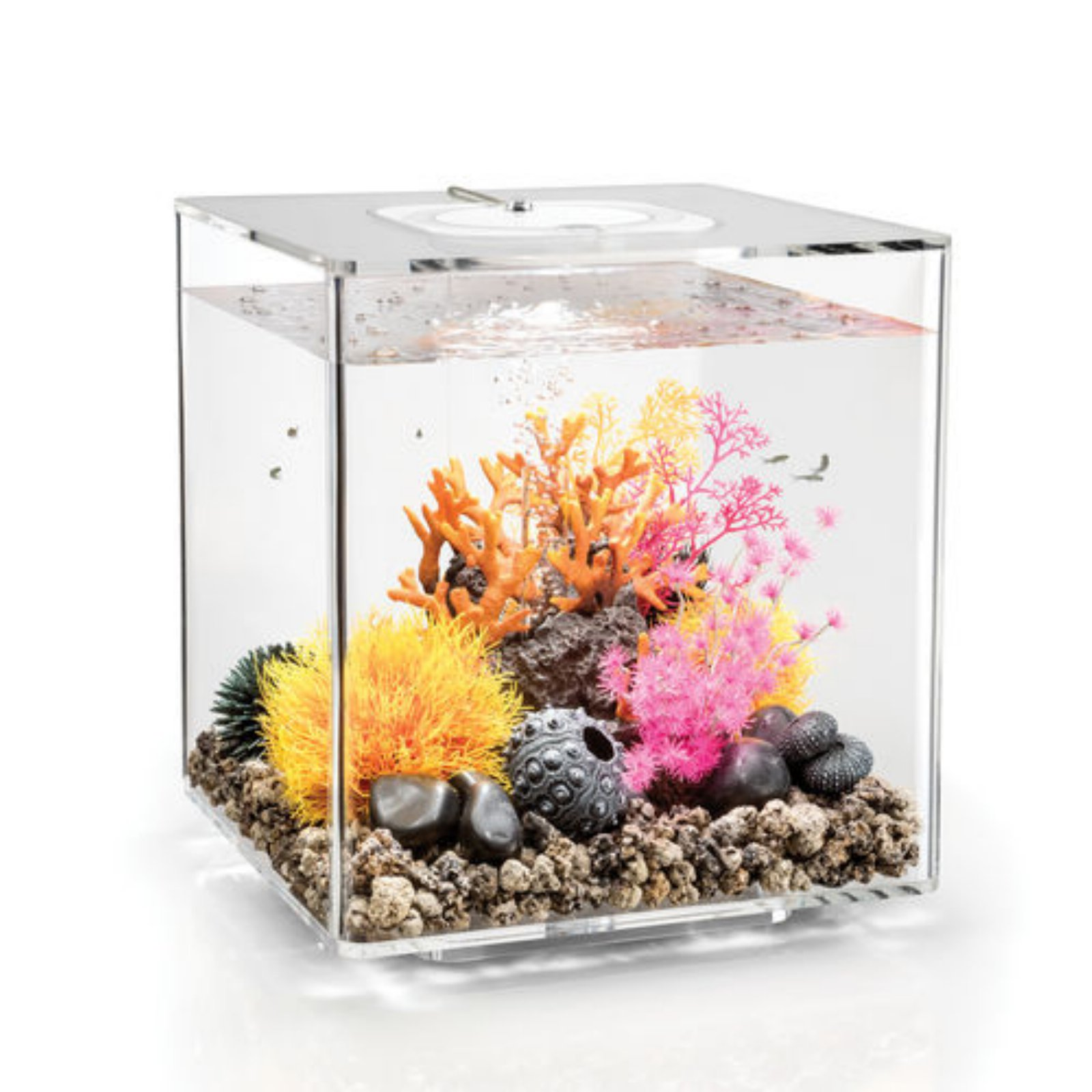 biOrb by Oase CUBE 30 Aquarium with MCR Light