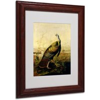 "Trademark Fine Art ""American Wild Turkey Cock"" Canvas Art by John James Audubon, Wood Frame"