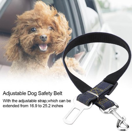 Dog Car Seat Harness | Best New Car Release 2020