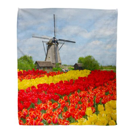 ASHLEIGH Flannel Throw Blanket Blue Spring Dutch Windmill Over Rows of Tulips Field Soft for Bed Sofa and Couch 58x80 Inches