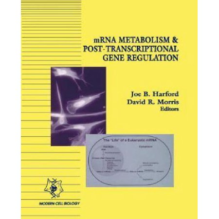 Mrna Metabolism   Post Transcriptional Gene Regulation  Modern Cell Biology