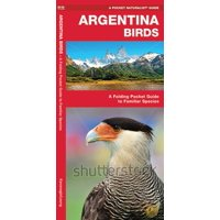 Argentina Birds : A Folding Pocket Guide to Familiar Species