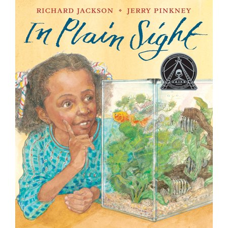 In Plain Sight : A Game