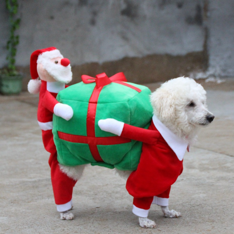 Dog Christmas Costume Pet Christmas Clothes Santa Costume Carrying Gift Box  Coat Fancy Apparel for Dogs Puppy - Walmart.com - Dog Christmas Costume Pet Christmas Clothes Santa Costume Carrying