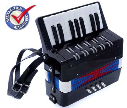D'Luca Kids Piano Accordion 17 Keys 8 Bass Black by D'Luca