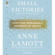 Small Victories : Spotting Improbable Moments of Grace