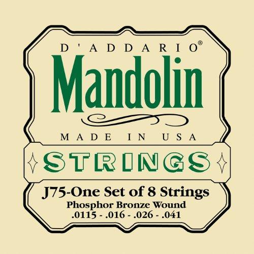 Dadd Mand Md/Hvy Strings