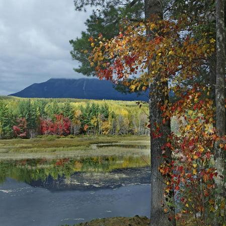 Creek Outdoor Wall Mount (Mount Katahdin from Abel Creek, Baxter State Park, Maine Print Wall Art By Tim Fitzharris )