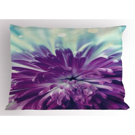 Purple Mints (Dahlia Pillow Sham Violet Colored Blooming Dahlia Close-Up with Petals in Pale Sunshine Floral, Decorative Standard Queen Size Printed Pillowcase, 30 X 20 Inches, Purple Mint Green, by)