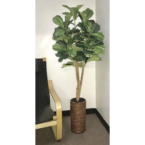 Bay Isle Home Fiddle Leaf Fig Tree in Basket