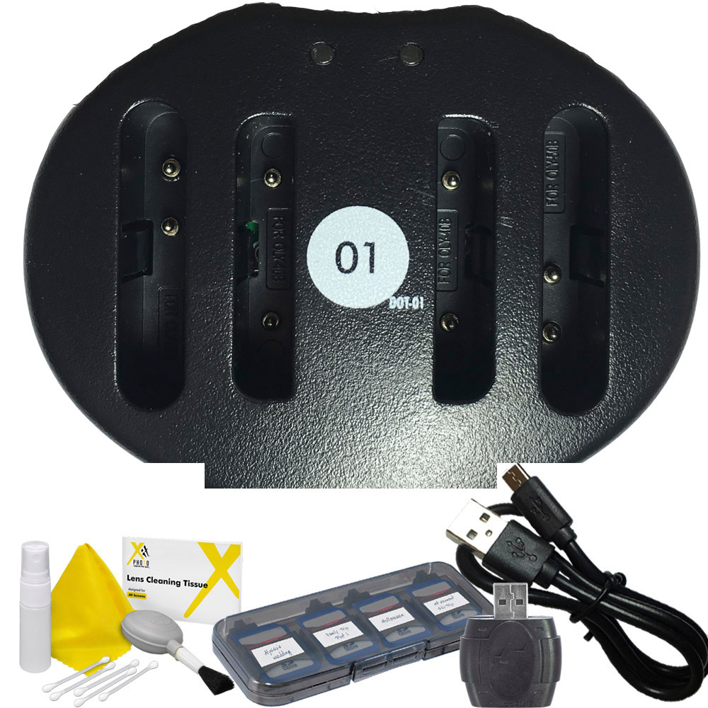 DOT-01 Replacement Dual Slot USB Charger for Nikon EN-EL10 and Nikon S60 Digital Camera and Nikon ENEL10 Accessory Bundle