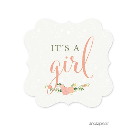 It's A Girl  Floral Roses Girl Baby Shower Fancy Frame Gift Tags, 24-Pack (Name Tags For Baby Shower)