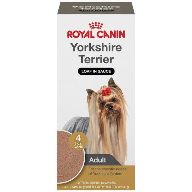 Perro Yorkshire amigurumi - Patrones gratis | 612x612