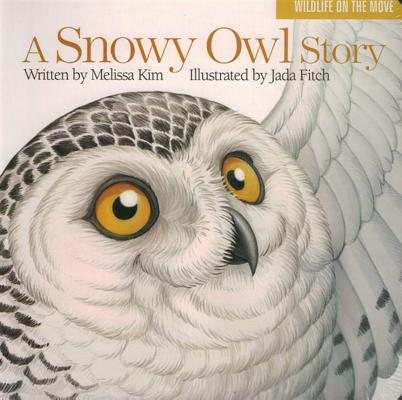 Snowy Owl Story (Board Book)