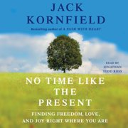 No Time Like the Present - Audiobook