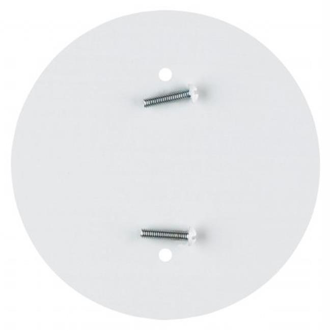 Westinghouse Lighting 7006500 Blank Outlet Cover Plate