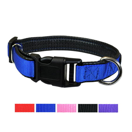 Best Plastic Quick Release Dog and Puppy Collar