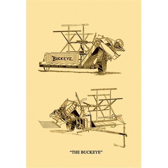 Buy Enlarge 0-587-08168-6P12x18 Buckeye- Paper Size P12x18