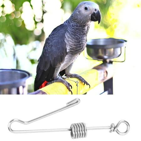 Tebru Bird Foot Ring,Pet Parrot Bird Anti Flying Training Stainless Steel Foot Chain Anklet Ring (Medium Size),Parrot Foot Ring
