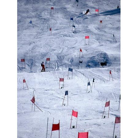 Downhill Ski Race Print Wall Art By Mark Newman
