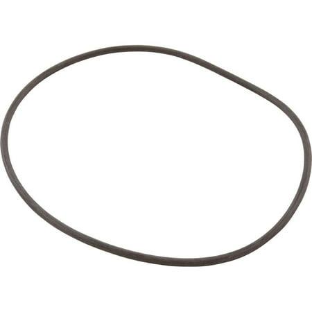 O-Ring, #252 - 48Fr Ww Pump Faceplate w/ Bag