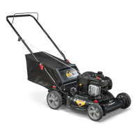 Product Image Murray 21 Gas Push Lawn Mower With Briggs And Stratton Engine Side Discharge