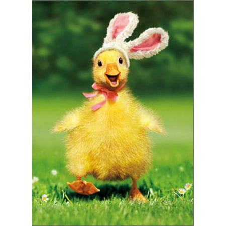 Avanti Press Duckling Bunny Funny / Humorous Easter Card