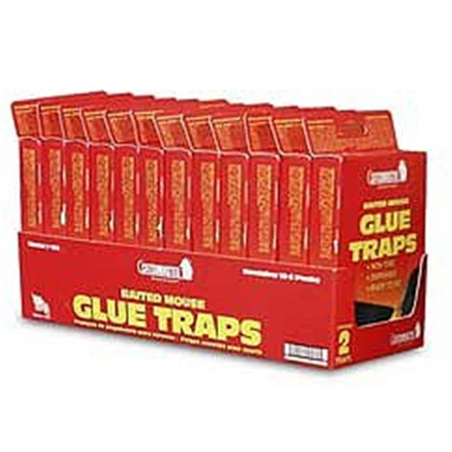 ATLANTIC PASTE & GLUE 102 2PK C Mast Mouse Gl Trap Case of 24