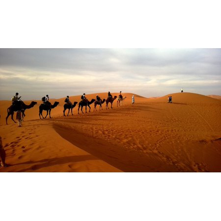 Canvas Print Camels Dune More Caravan Desert Ride Safari Stretched Canvas 10 x 14