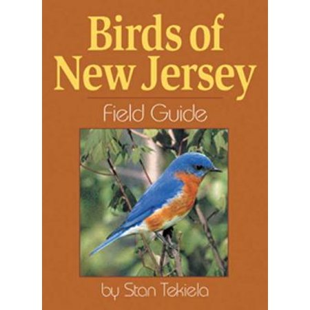 Birds of New Jersey Field GD (Gd Glas-rahmen)