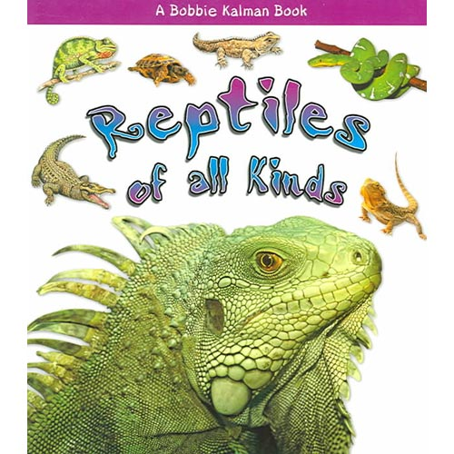 Reptiles of All Kinds